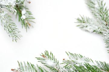 Christmas tree isolate on white background