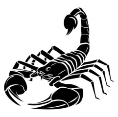 Scorpion MAscot Tattoo