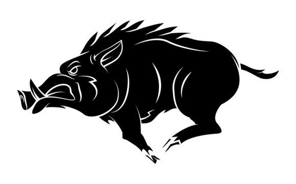 Wild Boar Tattoo Mascot