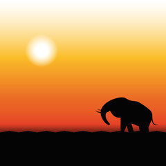 Wall Murals Panther Silhouette of Elephant Standing in the Sunset