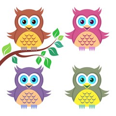 Colorful owls