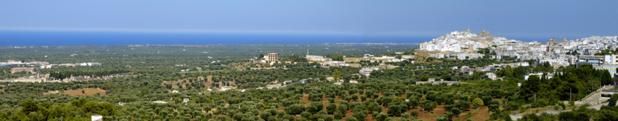 "Panoramic view of Ostuni called ""white town"" - Italy"