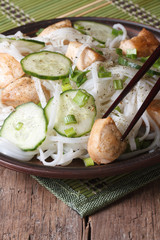 rice noodles with chicken and vegetables vertical