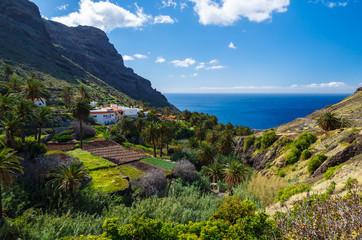 Tropical mountain landscape of La Gomera island, Spain