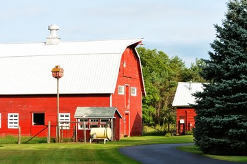 Red Barn and Driveway
