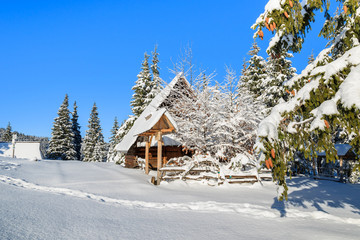 Hut on Rusinowa polana in winter time, Tatra Mountains, Poland
