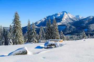 Winter landscape of Rusinowa polana, Tatra Mountains, Poland