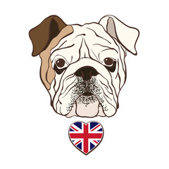 English bulldog face with  heart flag UK. Hand-drawn vector illu