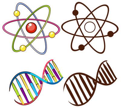 DNA structures