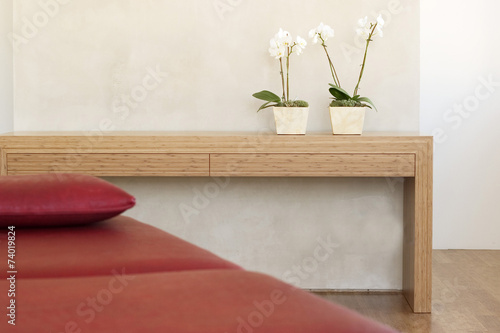 zwei topfpflanzen orchideen vor der wand auf dem regal mit roter couch zdj stockowych i. Black Bedroom Furniture Sets. Home Design Ideas