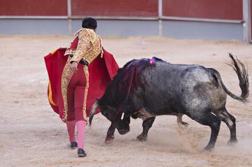 Bullfighter in a bullring