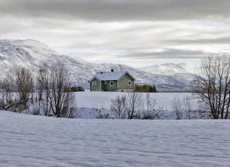 Wall Mural - Winter in northern Norway above the Arctic Circle.