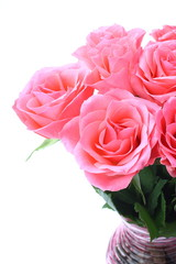 Bouquet of pink roses in vase on the white background