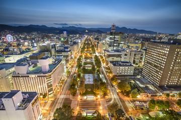 Sapporo, Japan City Skyline Overlooking Odori Park