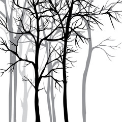 Vector background with trees