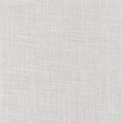 Light Grey delicate linnen background