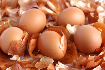 Eggs on the background of onion peel
