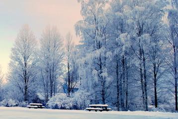 Winter im Dorf