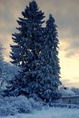 schwedisches wintermärchen