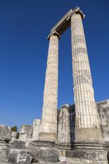 Temple of Apollo columns in Didyma antique city Didim