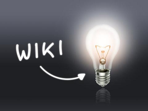 Wiki Bulb Lamp Energy Light gray
