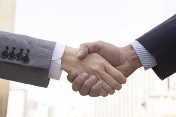 The handshake to have business