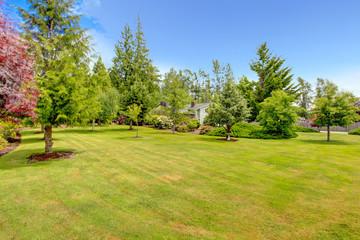 Fototapeta Front yard landscape design