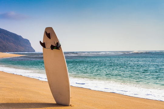 surfboard on the wild beach