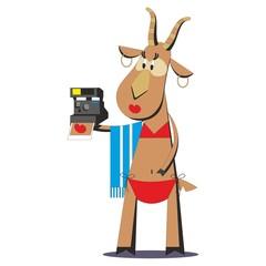 Goat in bathing suit making selfie 05