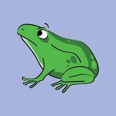 Green Frog Amphibian Drawing
