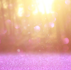 abstract photo of light burst among trees and glitter bokeh ligh