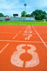 Wall Mural - Athletic track with white line