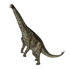 Spinophorosaurus dinosaur standing up - 3D render