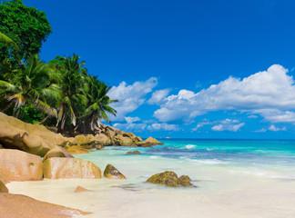 Tranquility Sea Landscape