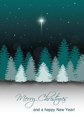 Vector Winter Night Landscape with Star of Bethlehem