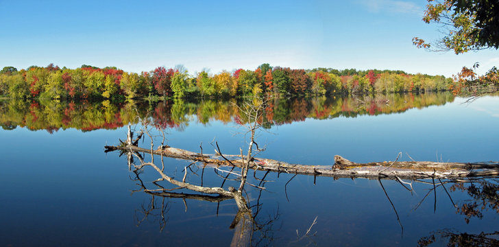 Fall foliage along Stillwater River in Maine