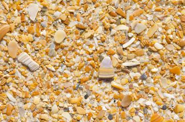 Natural sand, stones and shells wallpaper