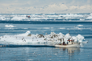 Acrylic Prints Arctic Fisherman boat, Greenland