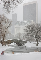 Fotomurales - Snowfall on Central Park's Gapstow Bridge and the Pond