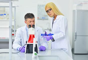 Fototapeta two people working in the laboratory