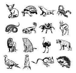 Desert animals vector black doodle outline pictogram icon set