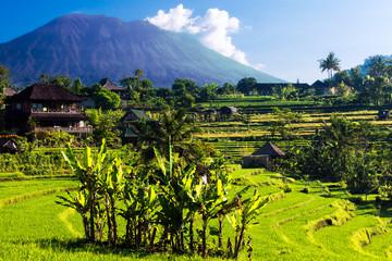 Fotobehang Indonesië At the foot of Mount Agung