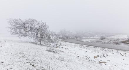 Road to Pirkuli Azerbaijan