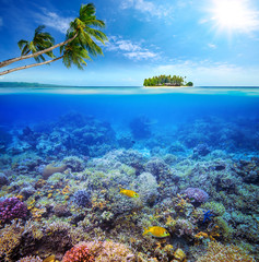 Coral reef with fish on background of small island. Maldives