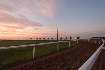Race Horses Riders Sand Track Silhouetted