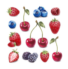Watercolor illustration of berries