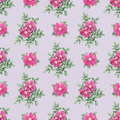 Watercolor pattern with dog rose illustration