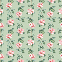 Watercolor pattern with rose flower illustration