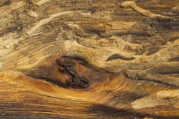 Poster Firewood texture Wood Texture