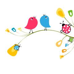 birds and ladybirds